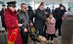 In pics: visually impaired passenger and his guide dog