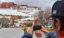 Potala Palace holds live streaming tour session