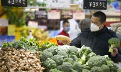 China's consumer inflation eases to 5.2 pct