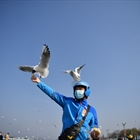 Bird lovers order 'takeaways' for black-headed gulls in Kunming