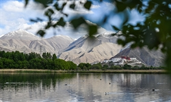 Scenery of Lalu Wetland National Nature Reserve in Lhasa