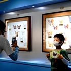Shanghai Science Festival held in entomological museum