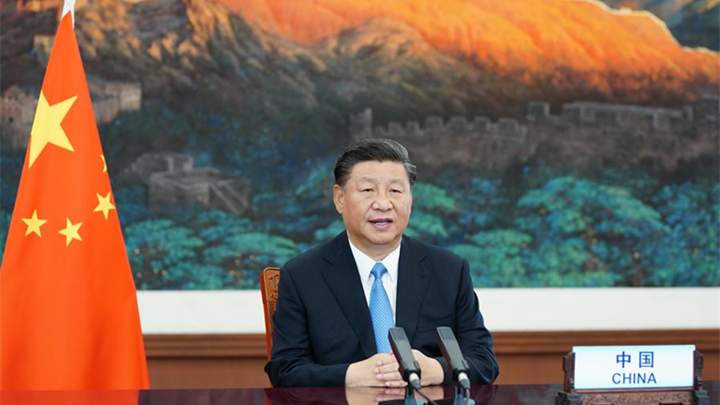 Xi Focus: Xi sums up lessons from pandemic, call for joining hands