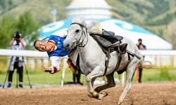 Equestrian performance held in Hohhot, N China's Inner Mongolia