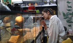 Exotic species get claws into pet market