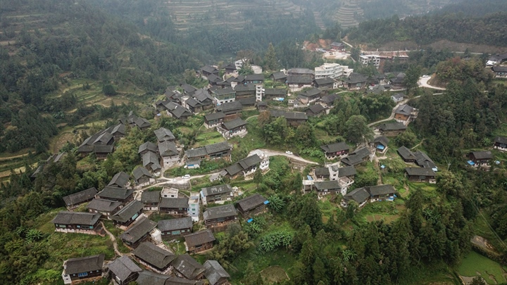 Better forestation aids Guizhou environment