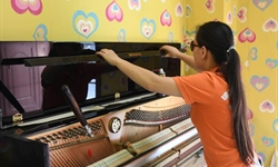 Blind woman turns piano tuner
