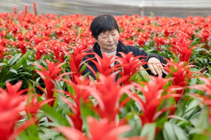 Chinese people make preparation for approaching Spring Festival