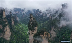 Scenery of Zhangjiajie National Forest Park in Hunan