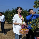 People celebrate harvest in China's Fujian